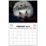 hedgehog_wall_calendar